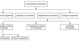 How are companies divided according to their incorporation