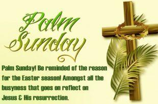 Palm Sunday 5 April 2020 Whatsapp Status